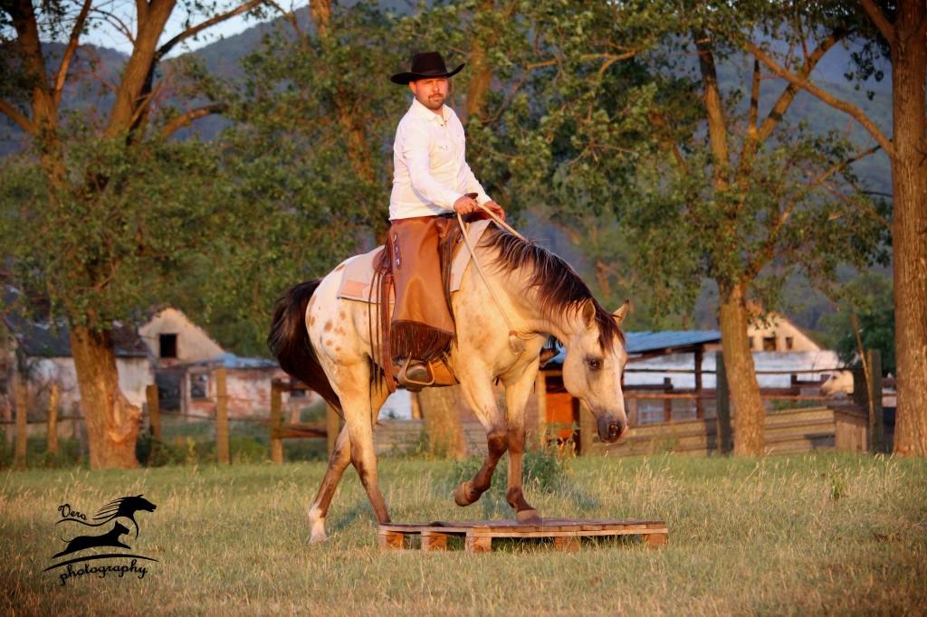 Michal Merka - Horsemanship Academy